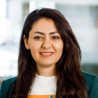 Shaghayegh Keshanidokht